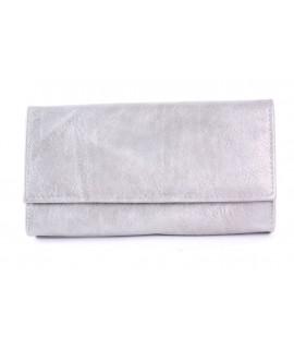 Čašnícka peňaženka - strieborná (20x11 cm)