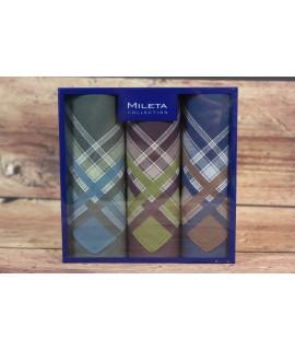 Pánske vreckovky v darčekovom balení 14703A (3ks) - farebné