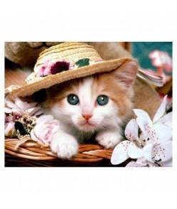 5D Diamantová mozaika - mačička s klobúkom