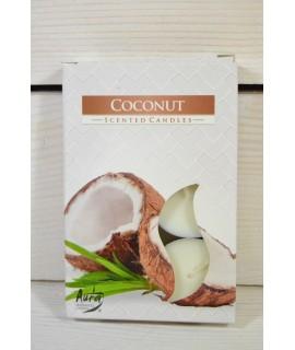 Čajová sviečka COCONUT