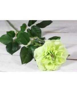 Umelá RUŽA - zelená (v. 69 cm)