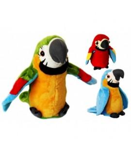 Hovoriaci papagáj Zelená