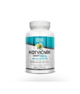 Kotvičník zemný | Tribulus Terrestris | tabletky 120 cps | 90% extrakt | doplnok stravy