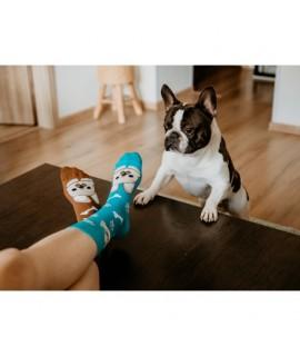 Veselé ponožky Hesty - Buldog 35-38