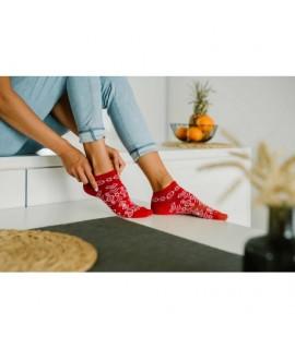 Veselé ponožky Hesty - Čičmany bordové - členkové 35-38